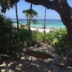 Imponen cobro de acceso a las playas de Xcacel; santuario de la tortuga marina