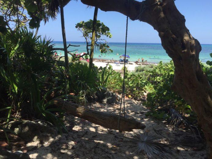 santuario de la tortuga marina 250718