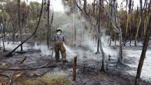 El incendio ha consumido 1.5 hectáreas de selva